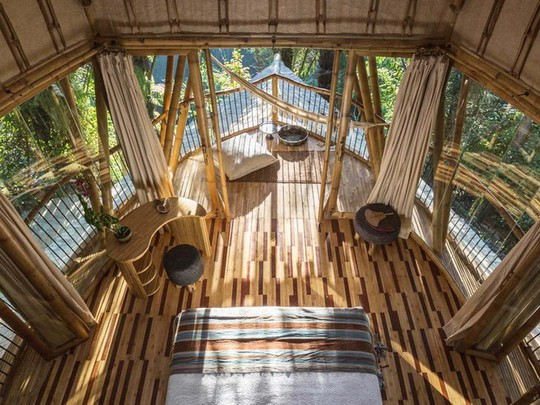"""Ngỡ ngàng """"biệt thự tre"""" 6 tầng tuyệt đẹp giữa rừng - Ảnh 4."""