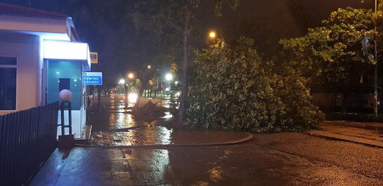 Bão số 5 đổ bộ vào Bình Định, Phú Yên - Ảnh 2.