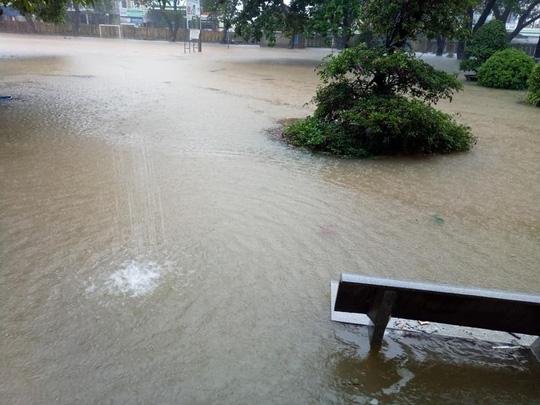 Bình Định: Ngổn ngang sau cơn bão số 5 - Ảnh 8.