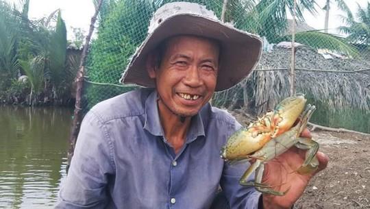 Cua biển xuất sang Trung Quốc 46.000 đồng/kg? - Ảnh 1.
