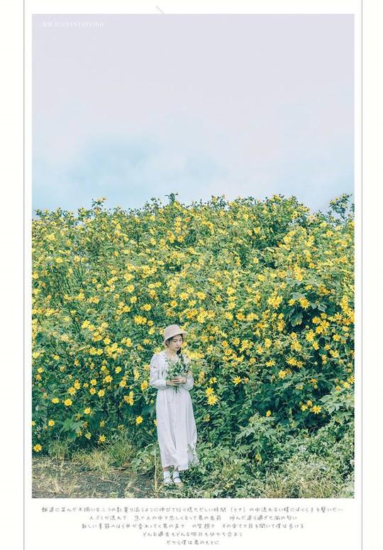 Định vị 9 cung đường săn hoa dã quỳ ở Đà Lạt - Ảnh 3.