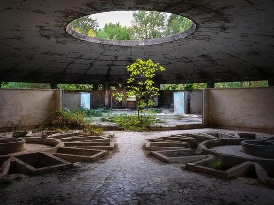 photo 7 157026525704037121348 - Có gì tại khu nghỉ dưỡng sang trọng bị bỏ hoang, đổ nát của Liên Xô cũ