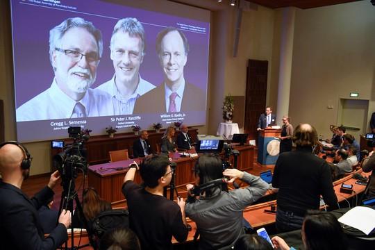 Nobel Y học 2019: Mở ra chiến lược mới chống ung thư - Ảnh 1.
