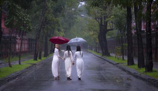 Khoảnh khắc mưa lãng mạn ở Huế - Ảnh 1.