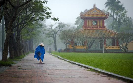 Khoảnh khắc mưa lãng mạn ở Huế - Ảnh 13.