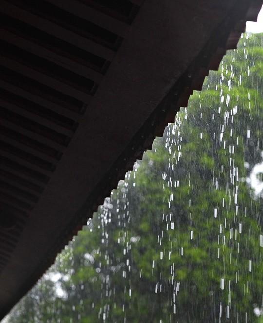 Khoảnh khắc mưa lãng mạn ở Huế - Ảnh 14.