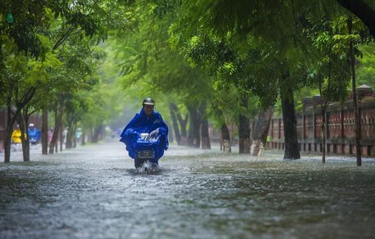 Khoảnh khắc mưa lãng mạn ở Huế - Ảnh 8.