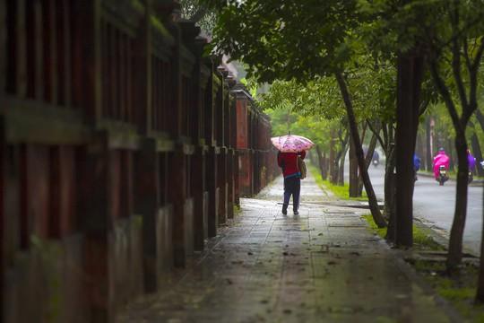 Khoảnh khắc mưa lãng mạn ở Huế - Ảnh 9.
