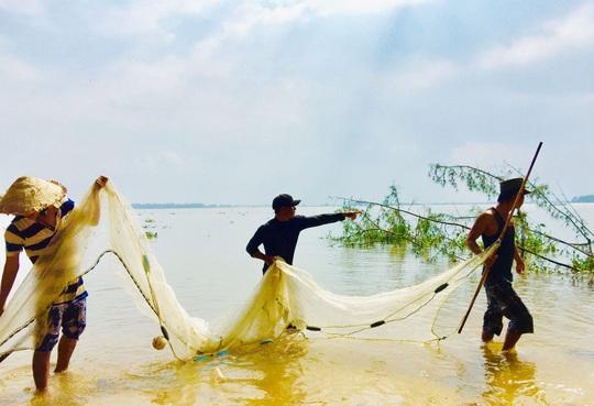 Hàng đàn cá nâu, cá hồng bé đang bơi đầy cửa biển Thuận An - Ảnh 4.