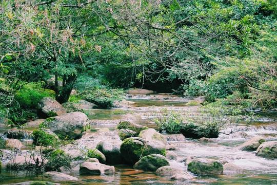 Đến Quảng Bình, detox tinh thần dưới dòng suối xanh ngọc bích - Ảnh 7.