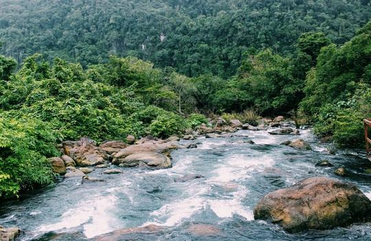 Đến Quảng Bình, detox tinh thần dưới dòng suối xanh ngọc bích - Ảnh 2.