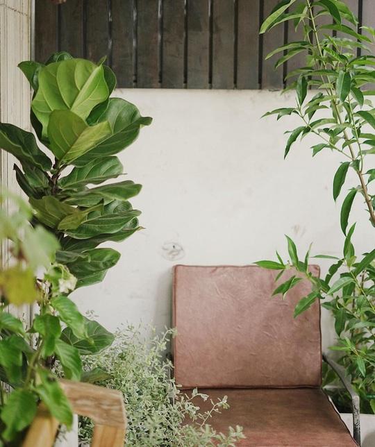 Những quán cà phê phong cách Đà Lạt ở Sài thành - Ảnh 7.