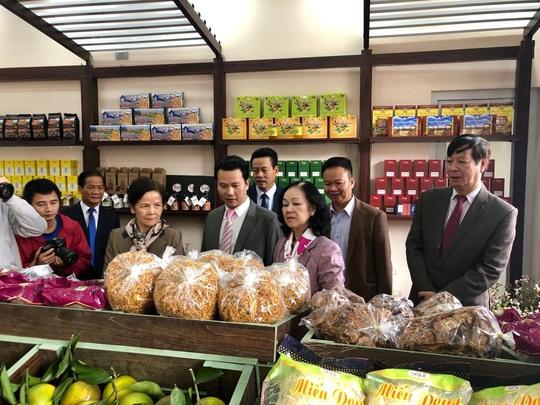 Bắt đầu lễ hội hoa tam giác mạch Sắc hồng cao nguyên đá Đồng Văn - Ảnh 2.