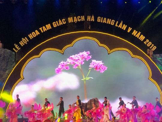 Bắt đầu lễ hội hoa tam giác mạch Sắc hồng cao nguyên đá Đồng Văn - Ảnh 1.