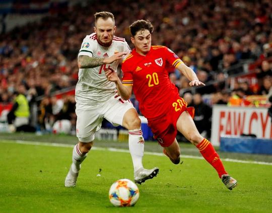 Xứ Wales ngược dòng ngoạn mục, giành suất vé cuối dự Euro - Ảnh 1.