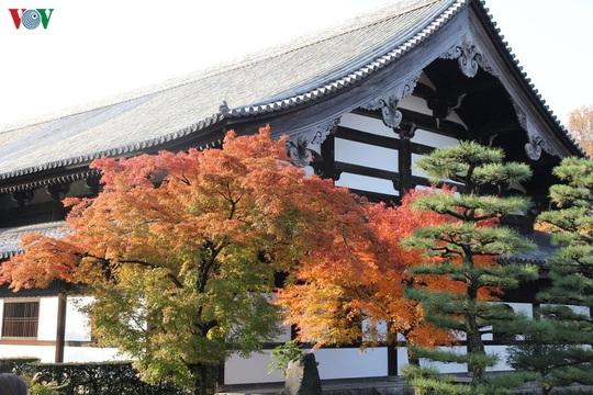 Tới ngôi chùa ngắm lá đỏ đẹp nhất Kyoto - Ảnh 1.