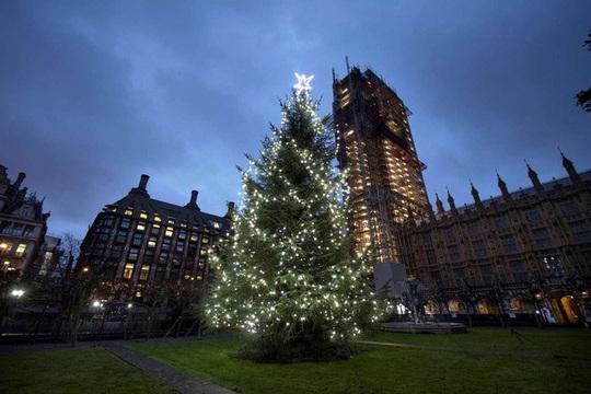 Choáng ngợp những cây thông Noel lung linh trên khắp thế giới - Ảnh 7.
