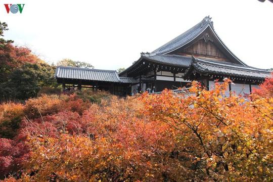 Tới ngôi chùa ngắm lá đỏ đẹp nhất Kyoto - Ảnh 3.