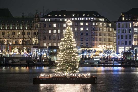 Choáng ngợp những cây thông Noel lung linh trên khắp thế giới - Ảnh 3.