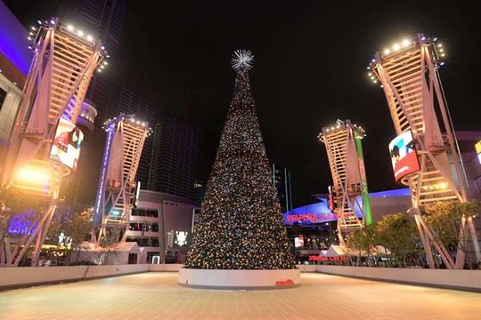Choáng ngợp những cây thông Noel lung linh trên khắp thế giới - Ảnh 4.