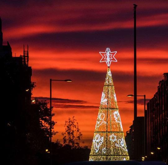 Choáng ngợp những cây thông Noel lung linh trên khắp thế giới - Ảnh 6.