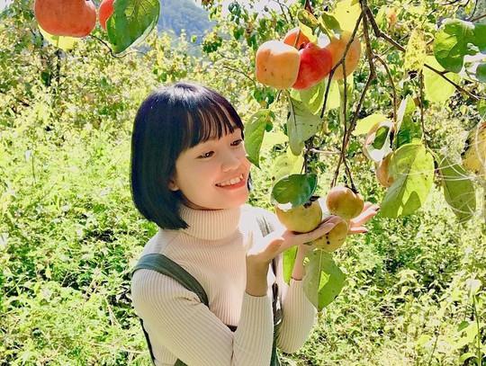 Vườn hồng Đà Lạt vào mùa chín đỏ hút giới trẻ - Ảnh 7.