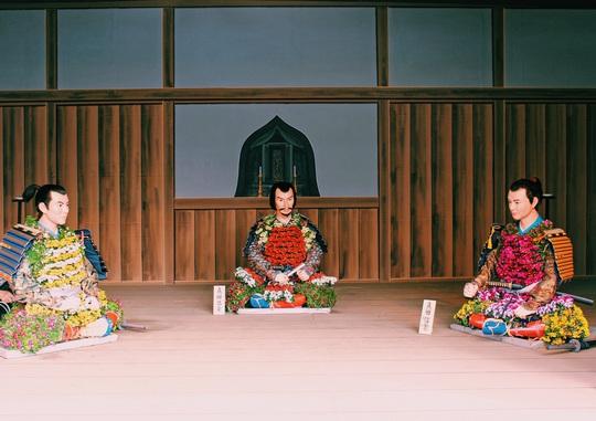 Rủ nhau ngắm hoa anh đào, nhiều người nhầm tưởng về quốc hoa Nhật Bản - Ảnh 8.
