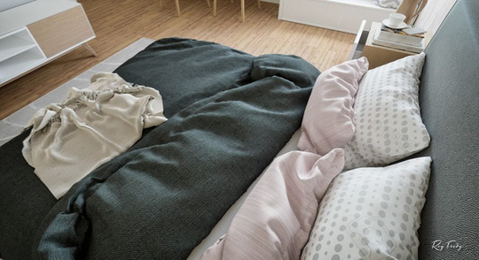 Căn hộ nhỏ sáng tạo với thiết kế đặc biệt biến phòng tắm thành trung tâm - Ảnh 12.