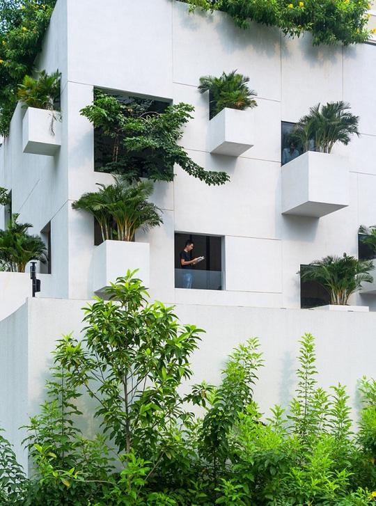 Nhà trổ 10 mảnh vườn lơ lửng - Ảnh 1.