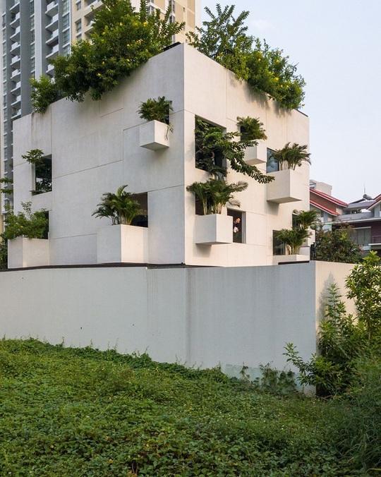 Nhà trổ 10 mảnh vườn lơ lửng - Ảnh 11.