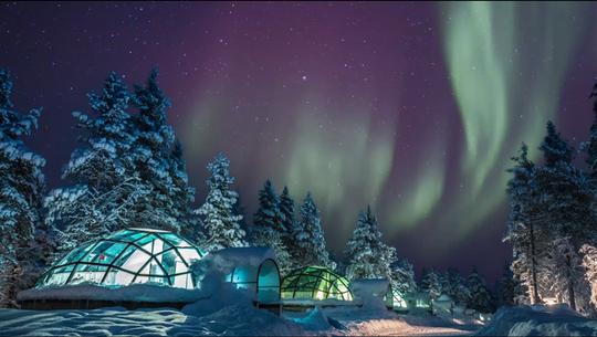 Nơi ngắm cực quang từ những căn lều thủy tinh - Ảnh 4.