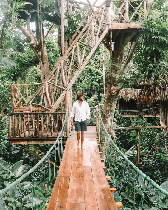 Những ngôi nhà trên cây tuyệt đẹp ai cũng muốn sống thử - Ảnh 15.