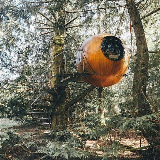 Những ngôi nhà trên cây tuyệt đẹp ai cũng muốn sống thử - Ảnh 4.