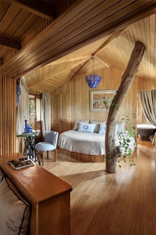 Những ngôi nhà trên cây tuyệt đẹp ai cũng muốn sống thử - Ảnh 8.