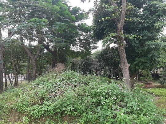 """Cận cảnh khu """"đất vàng"""" xây dựng trụ sở ngàn tỉ bỏ hoang của tỉnh nghèo Nghệ An - Ảnh 10."""