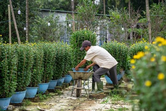 Khung cảnh rực rỡ ở làng hoa chong đèn chuẩn bị vụ hoa Tết - Ảnh 10.