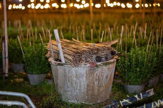 Khung cảnh rực rỡ ở làng hoa chong đèn chuẩn bị vụ hoa Tết - Ảnh 7.