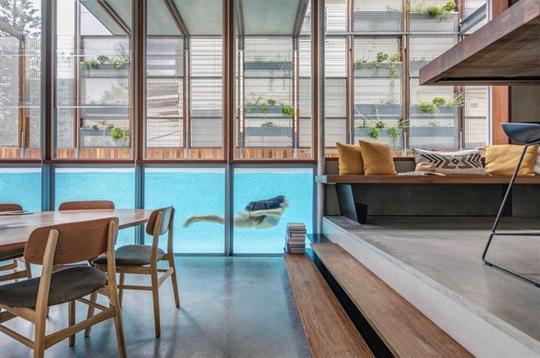 9 kiến trúc bể bơi trong nhà tuyệt đẹp - Ảnh 6.