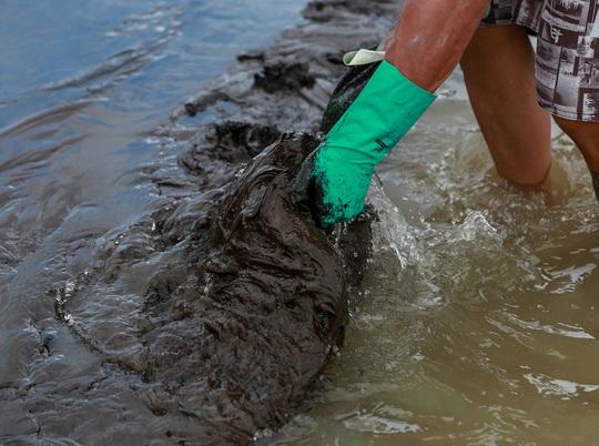 """4.400 km bờ biển Brazil chết tức tưởi vì """"thủy triều đen"""" bí ẩn - Ảnh 7."""