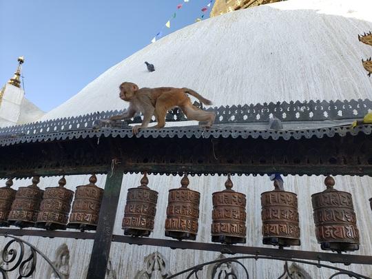 Cuộc sống bình lặng đến bất ngờ ở Nepal - Ảnh 5.