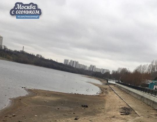 Hiện tượng bí ẩn trăm năm có một khuấy đảo sông Moskva - Ảnh 1.