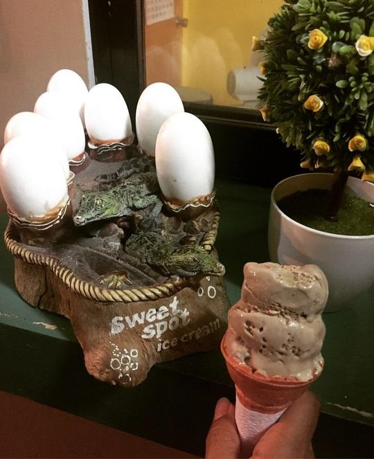 Ăn thử kem trứng cá sấu ở Philippines - Ảnh 1.