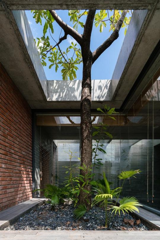 Nhà gạch thô mộc ở Đà Nẵng nhìn sần sùi bên ngoài bỗng nổi bật trên báo ngoại - Ảnh 6.