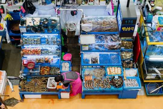Khám phá khu chợ hải sản lớn nhất Seoul - Ảnh 1.