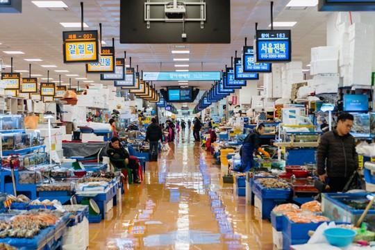 Khám phá khu chợ hải sản lớn nhất Seoul - Ảnh 2.
