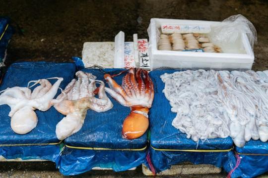 Khám phá khu chợ hải sản lớn nhất Seoul - Ảnh 4.