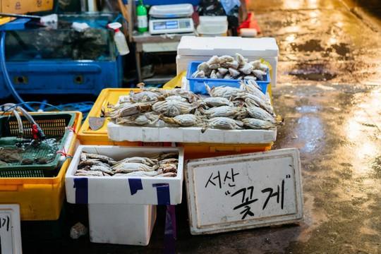 Khám phá khu chợ hải sản lớn nhất Seoul - Ảnh 5.