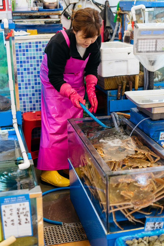 Khám phá khu chợ hải sản lớn nhất Seoul - Ảnh 7.