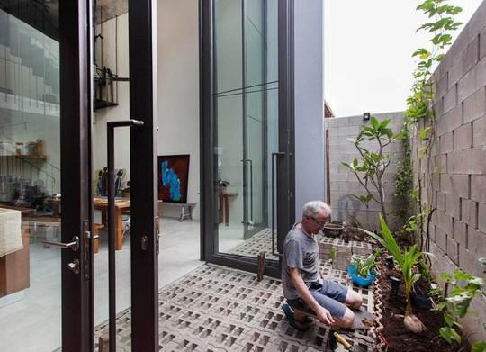 Ngôi nhà như rừng nhiệt đới với hơn 40 loại cây - Ảnh 1.