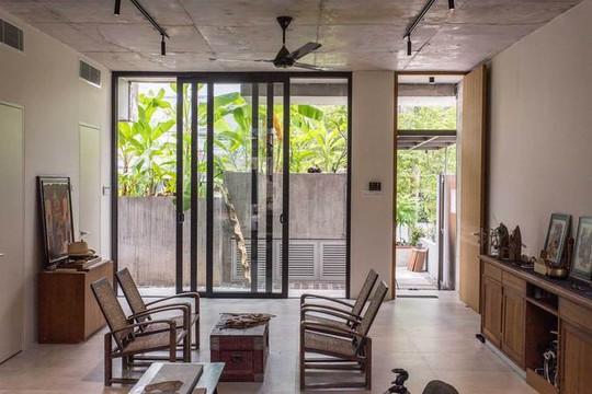 Ngôi nhà như rừng nhiệt đới với hơn 40 loại cây - Ảnh 4.
